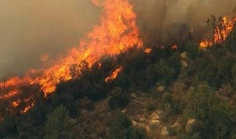 Skandali/E zbulon KLSH: Shqipëria po përvëlohet nga zjarret, drejtori i emergjencave civile ka marrë pushimet