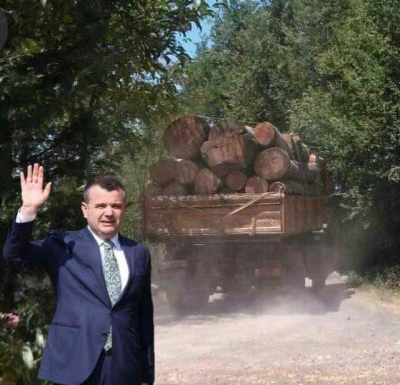 """Ikën tualeti nga fshati dhe mbrapa lë shkretëtirë/ Malltezi """"shpërthen"""" ndaj Ballës për masakrën me pyjet"""