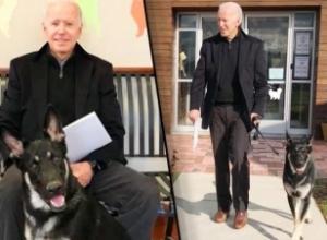 Aksidentohet Biden, dëmtohet në këmbë duke luajtur me qentë e tij. Donald Trump i uron shërim të shpejtë