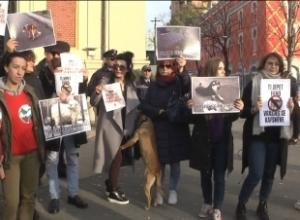 'Vrasës, vrasës'/ Aktivistët e të drejtave të kafshëve ngrenë zërin kundër Erion Veliaj